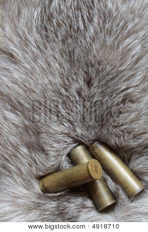 Cartridges On Fur