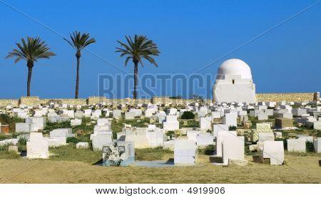 Tunisian Cemetery