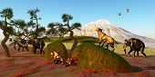 picture of saber-toothed  - A family of Saber Toothed Tigers watch as a herd of Woolly Mammoths pass by their den - JPG