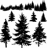 stock photo of silhouette  - Detailed vectoral pine trees and  forest silhouette - JPG