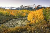 pic of mear  - Dallas Divide Uncompahgre National Forest Colorado USA