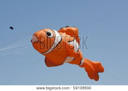Orange And White Nemo Clownfish Kite Close Up