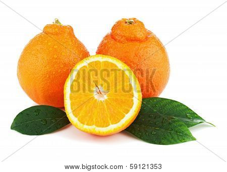 Orange Fruits With Green Leaves Isolated On White Background.