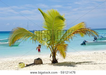 Paradise beach at Saona Island, Dominican Republic