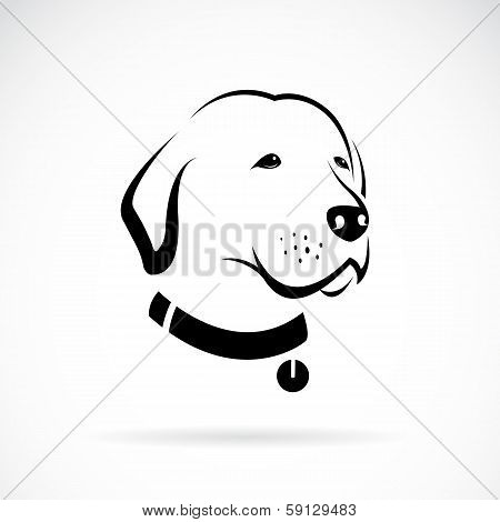 Vector Image Of An Labrador Dog's Head