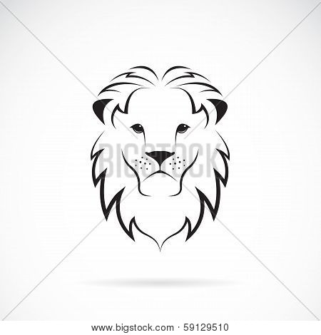 Vector Image Of An Lion Head