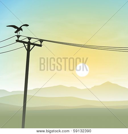 A Bird on Telephone Lines with Misty Sunrise, Sunset