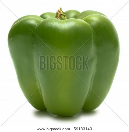 Green Bell Pepper Front View Isolated On White
