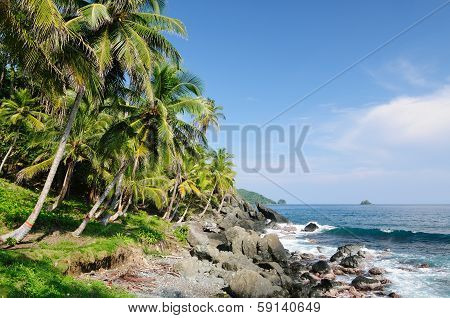 Wild Colombian Caribbean Coast Near Capurgana