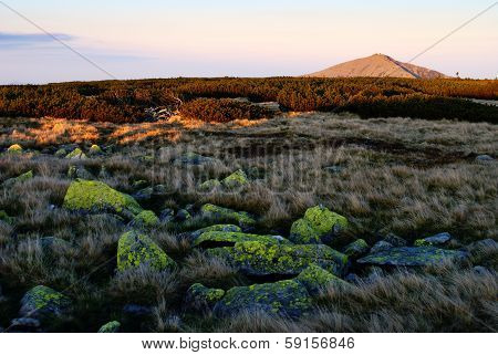 Evening View Of Mount Snezka - Top Of National Park Krkonose Giant Mountains - Czech Republic
