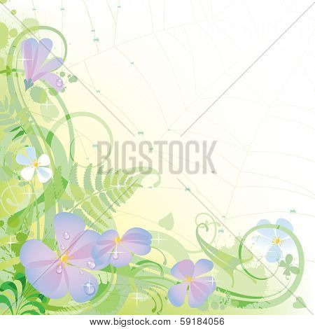 Vector decorative background with wild morning flowers and spider web covered with dew