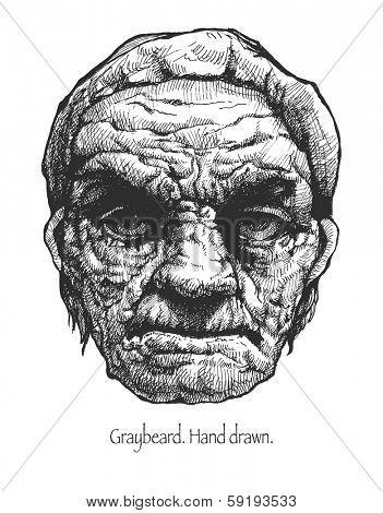Greybeard. Hand drawn. Vector eps 8.
