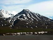 stock photo of denali national park  - The rugged - JPG