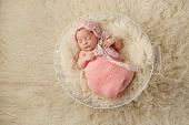 picture of pink eyes  - A portrait of a five week old newborn baby girl wearing a pink bonnet and sleeping in a wire basket - JPG
