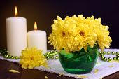 Beautiful chrysanthemum flowers in vase on table on dark yellow background