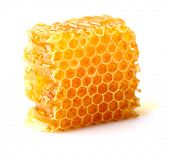 foto of honeycomb  - Honeycomb in closeup - JPG
