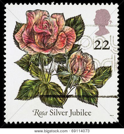 Britain Rose Postage Stamp
