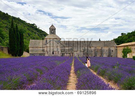 Abbey Of Senanque