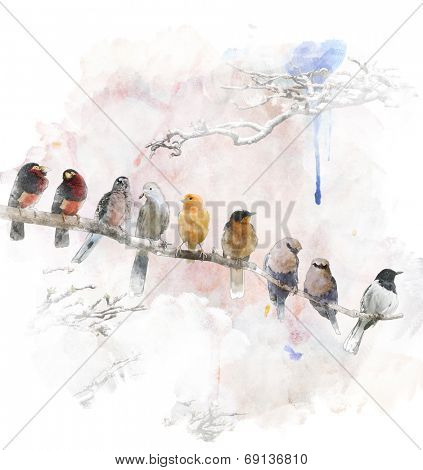 Watercolor Digital Painting Of   Perching Birds