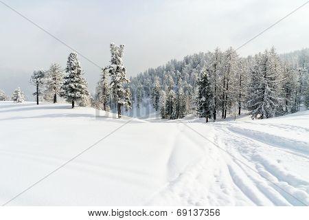 Snow Ski Run In Skiing Area Via Lattea Italy