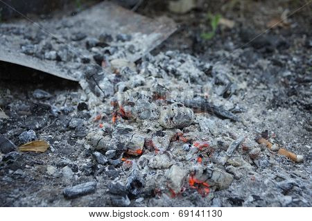 the glowing coals