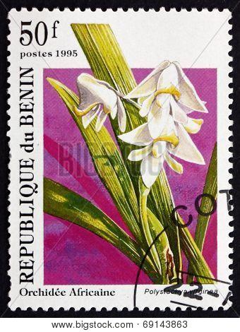 Postage Stamp Benin 1995 Polystachya Virginea, Orchid