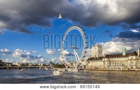 London Big Wheel Thames River And A Seagull