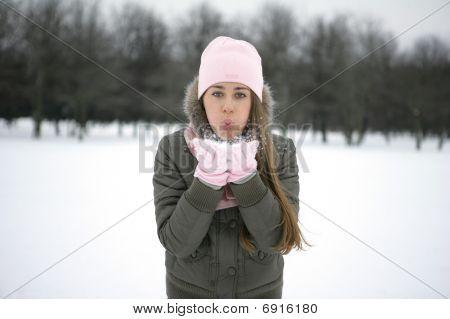 Snow on the palms