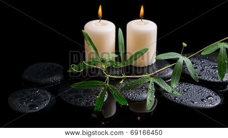 Beautiful Spa Concept Of Green Tendril Passionflower, Candles And Zen Stones With Drops On Reflectio