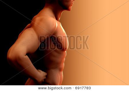 Nude Man Torso