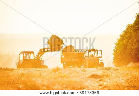 combine harvester unloading grain into the trucks trailer on  summer day