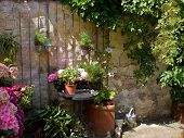 pic of planters  - Typical wall planter pots with flowers and plants hanged on a wall Tuscany Italy style - JPG
