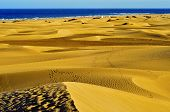 picture of canary-islands  - a view of the Natural Reserve of Dunes of Maspalomas - JPG