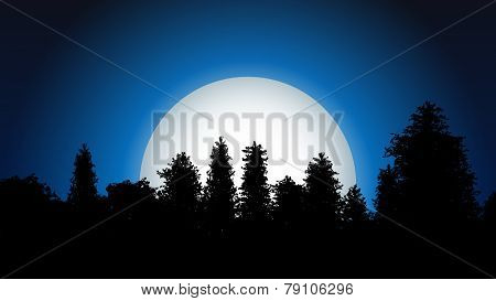 Night forest silhouette with moon