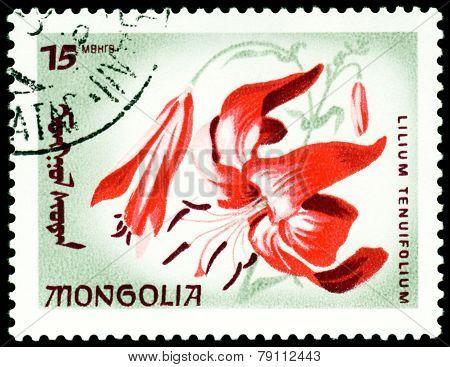 Vintage  Postage Stamp. The Flowerses Lilium Tenuifolium.