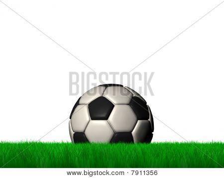 Ball in grass