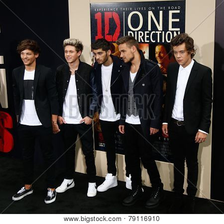 NEW YORK-AUG 26: (L-R) Louis Tomlinson, Zayn Malik, Niall Horan, Liam Payne & Harry Styles of One Direction at 'One Direction:This Is Us' premiere at Ziegfeld Theater August 26, 2013 in New York City.