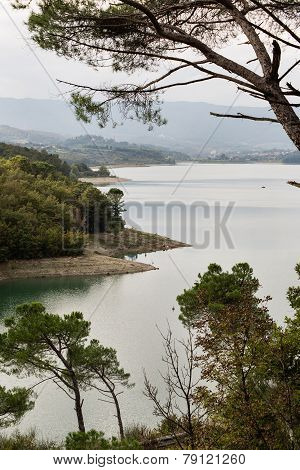 Bilancino Lake Landscape