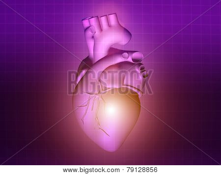 Heart Disease 3D Anatomy Illustration Purple Pink