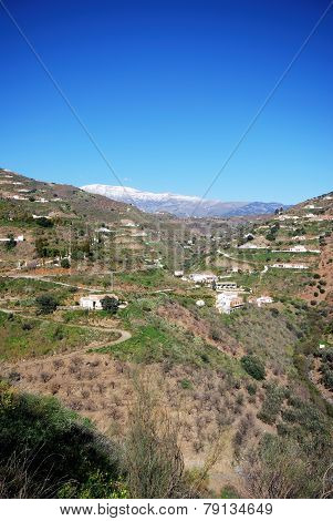 Spanish countryside, Andalusia.