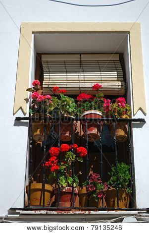 Pretty Spanish window with flowers.
