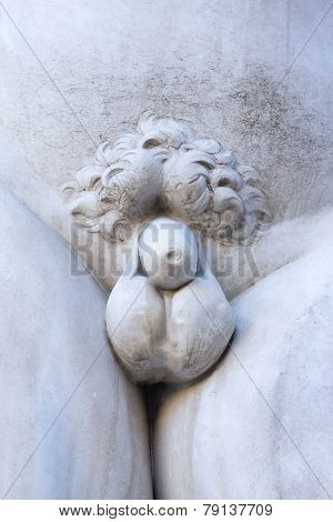 Detail Of The Naked Body Of  David Sculpture (florence, Italy)