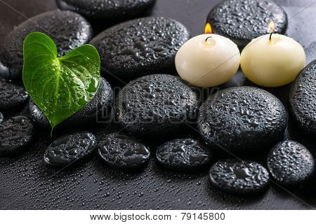 Beautiful Spa Still Life Of Green Leaf Calla Lily And Candles On Zen Basalt Stones With Drops, Close