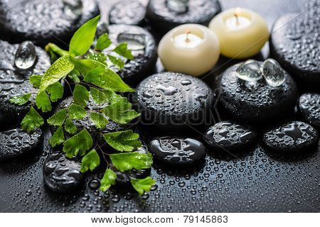 Beautiful Spa Still Life Of Green Twig Fern, Bamboo, Ice And Candles On Zen Basalt Stones With Drops