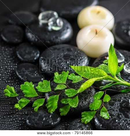 Beautiful Spa Concept Of Green Twig Fern, Bamboo,  Ice And Candles On Zen Basalt Stones With Dew, Cl