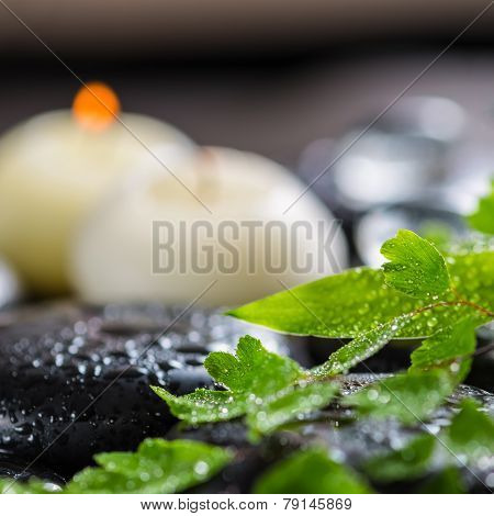 Beautiful Spa Still Life Of Green Twig Fern, Bamboo,  Ice And Candles On Zen Basalt Stones With Dew,