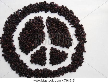 peace seeds