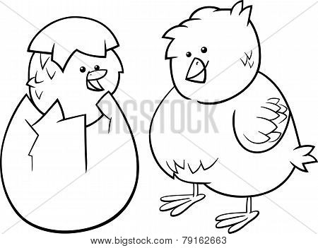 Easter Chicks Cartoon Coloring Page