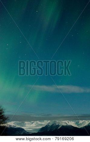 Aurora Over Grewingk Glacier