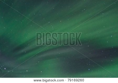 Field Of Green Aurora